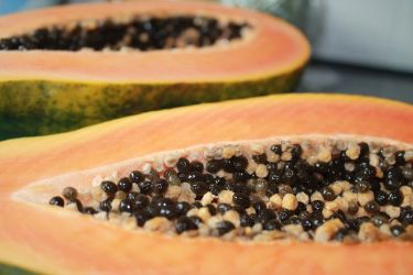 inside-the-papaya-fruit