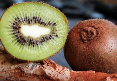 the-kiwi-fruit