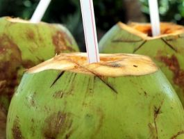 coconut-water-for-hangover-icn