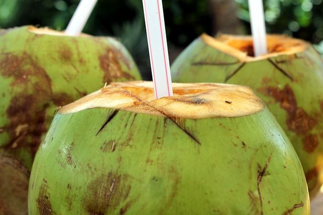 coconut-water-for-hangover